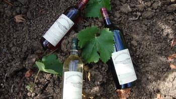 Permalien à: Quels vins ?